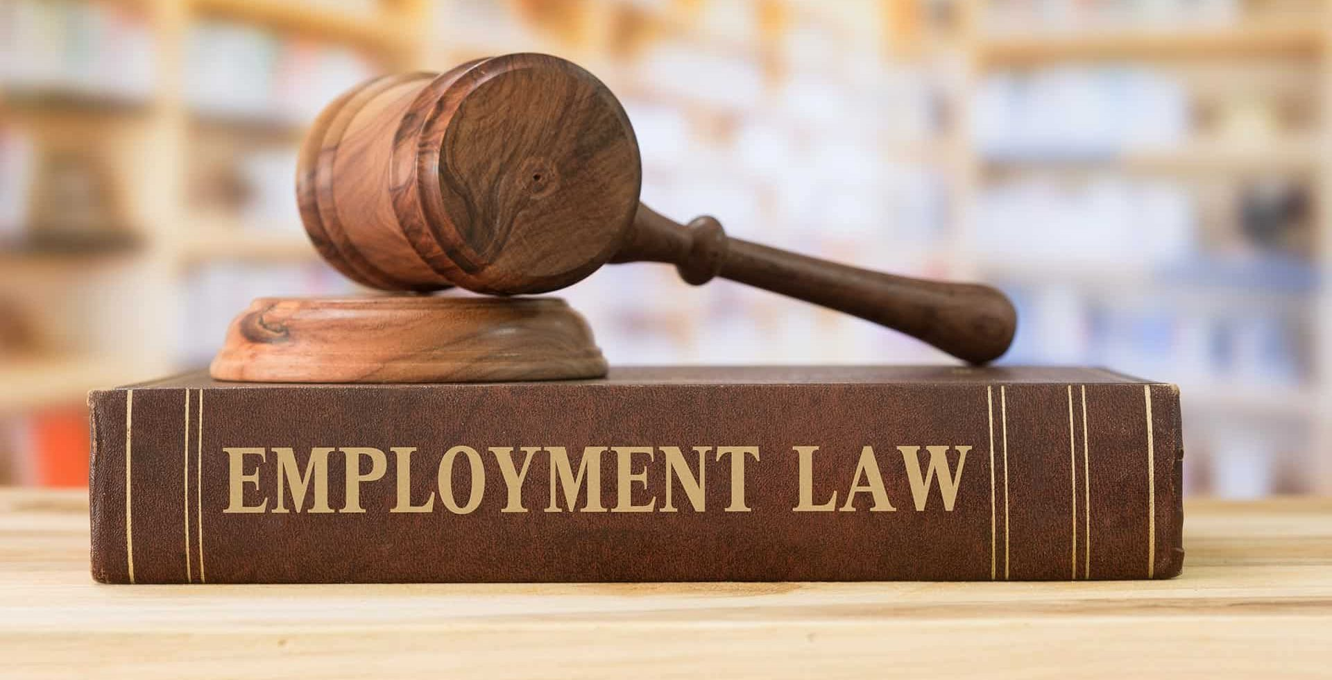 employment-law-article-3